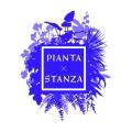 ピアンタ×スタンツァ