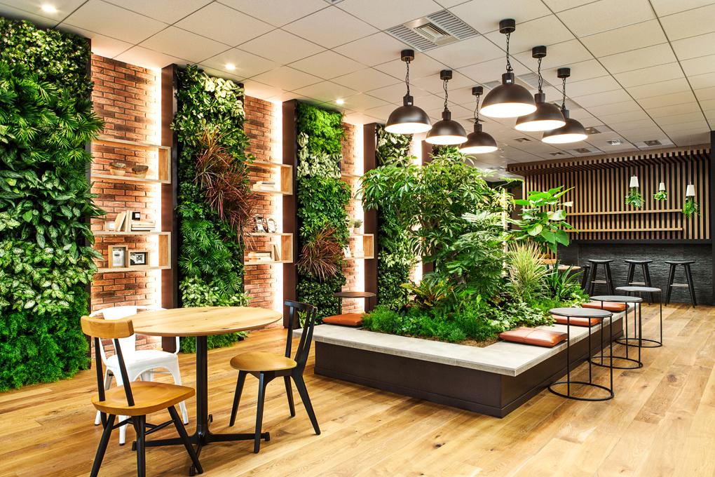 「緑が多いおしゃれなオフィス」の画像検索結果